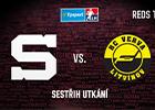 Přehrát video: Sestřih ze zápasu s Litvínovem